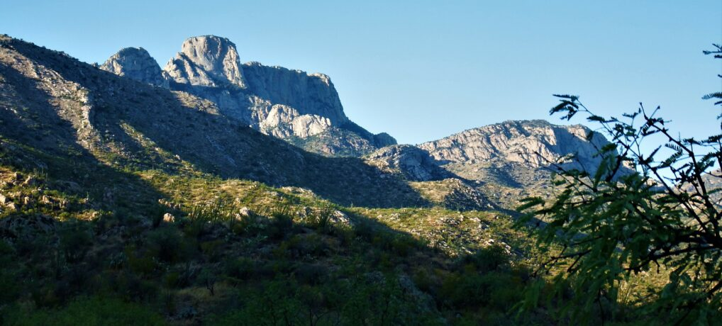 Hiking in Catalina State Park
